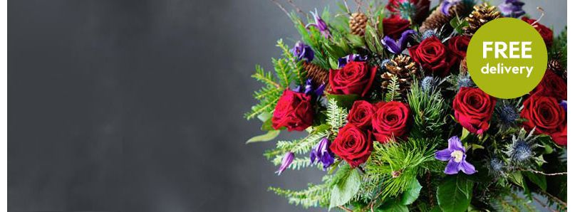 Christmas flowers and plants