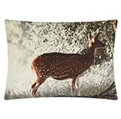 Deer Cushion, £25