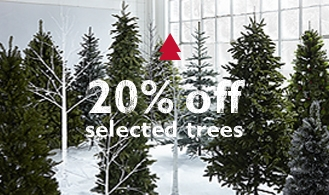 20% off selected Christmas Trees