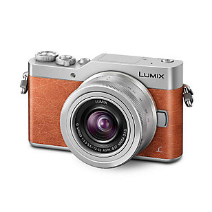 Panasonic Lumix DC-GX800 camera