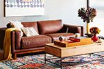 Introducing... west elm