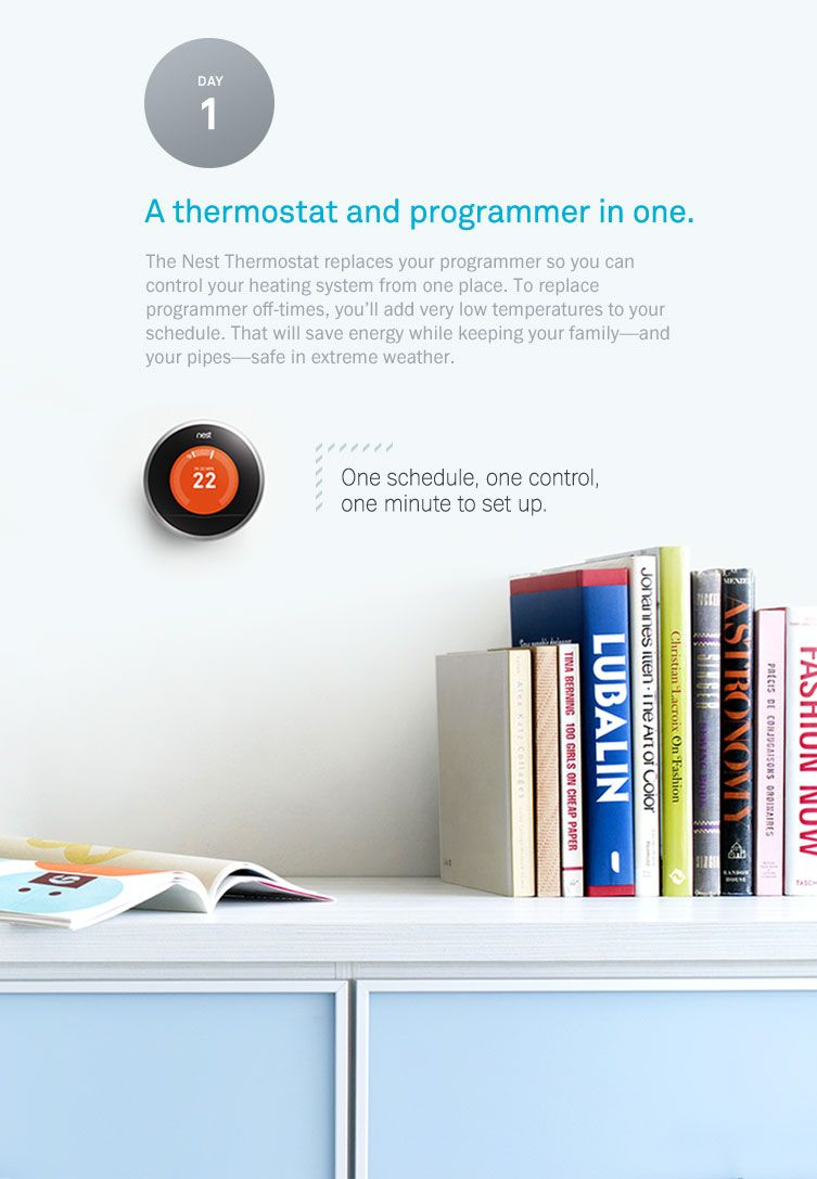 thermostat and programmer in one