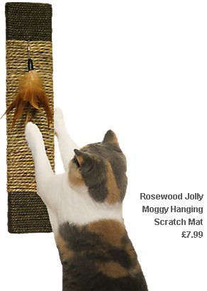 Rosewood Jolly Moggy Hanging Scratch Mat