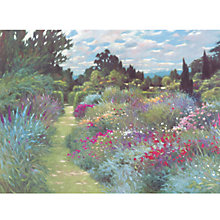 Buy Allan Myndzak - May Garden Online at johnlewis.com