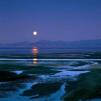 Peter John Fellows – Blue Moon