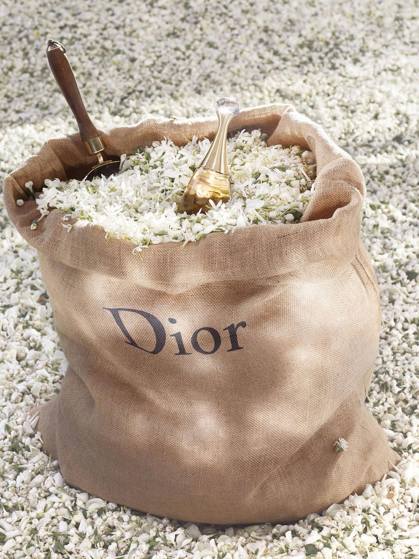 Dior Jadore Eau De Parfum Spray At John Lewis Partners