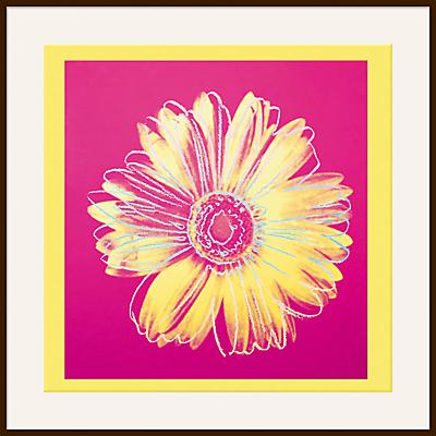 Warhol – Daisy 1982, Yellow on Pink