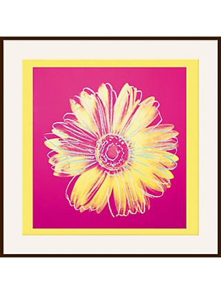 Warhol - Daisy 1982, Yellow on Pink