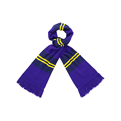 Product photo of Archbishop blanche c of e high school girls scarf