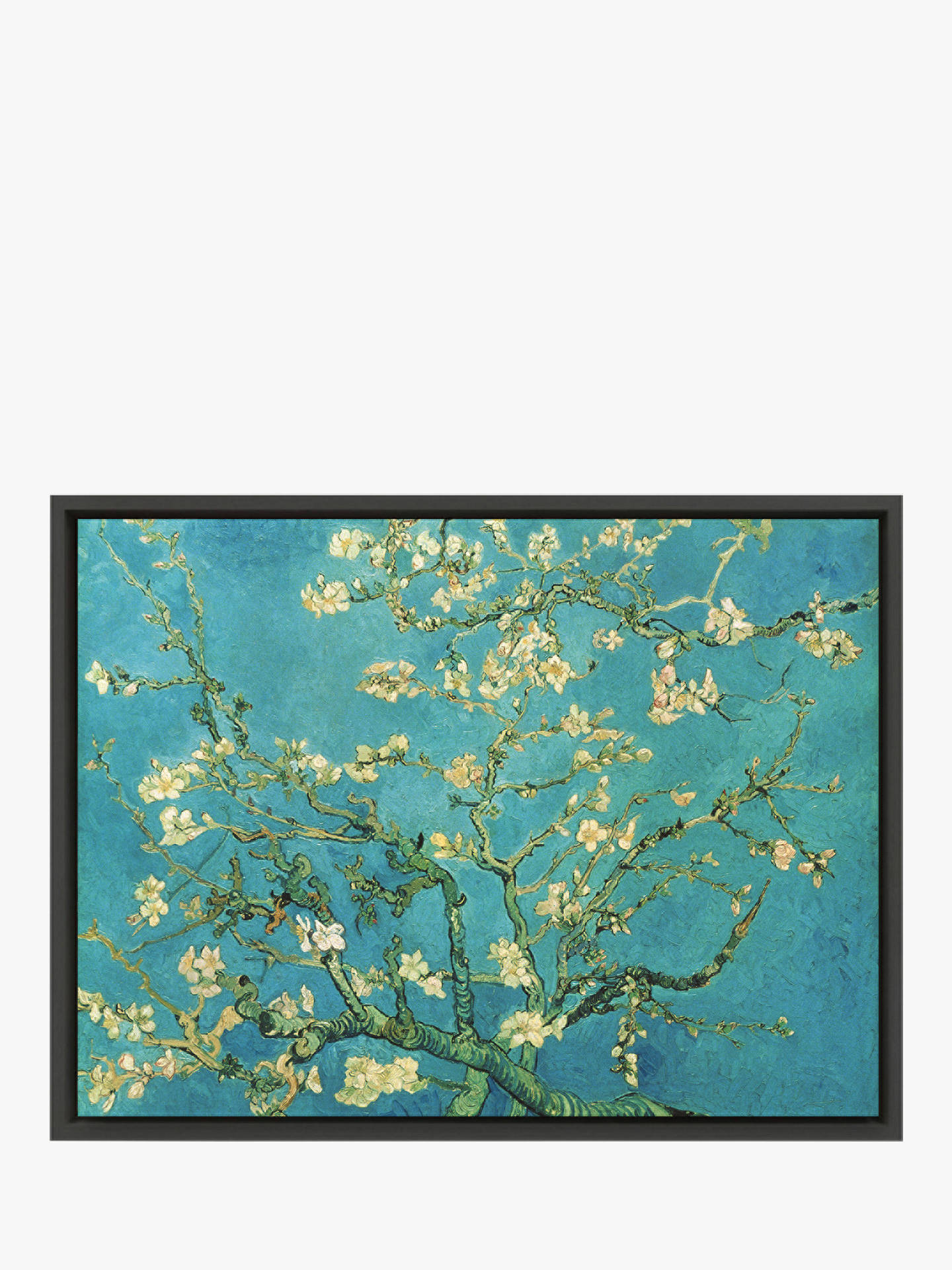 Vincent Van Gogh Almond Blossom At John Lewis Partners