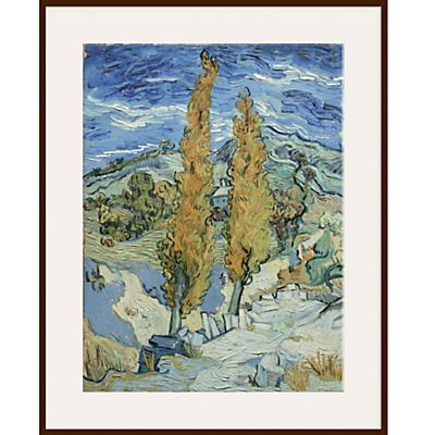 Van Gogh – The Poplars at Saint Remy