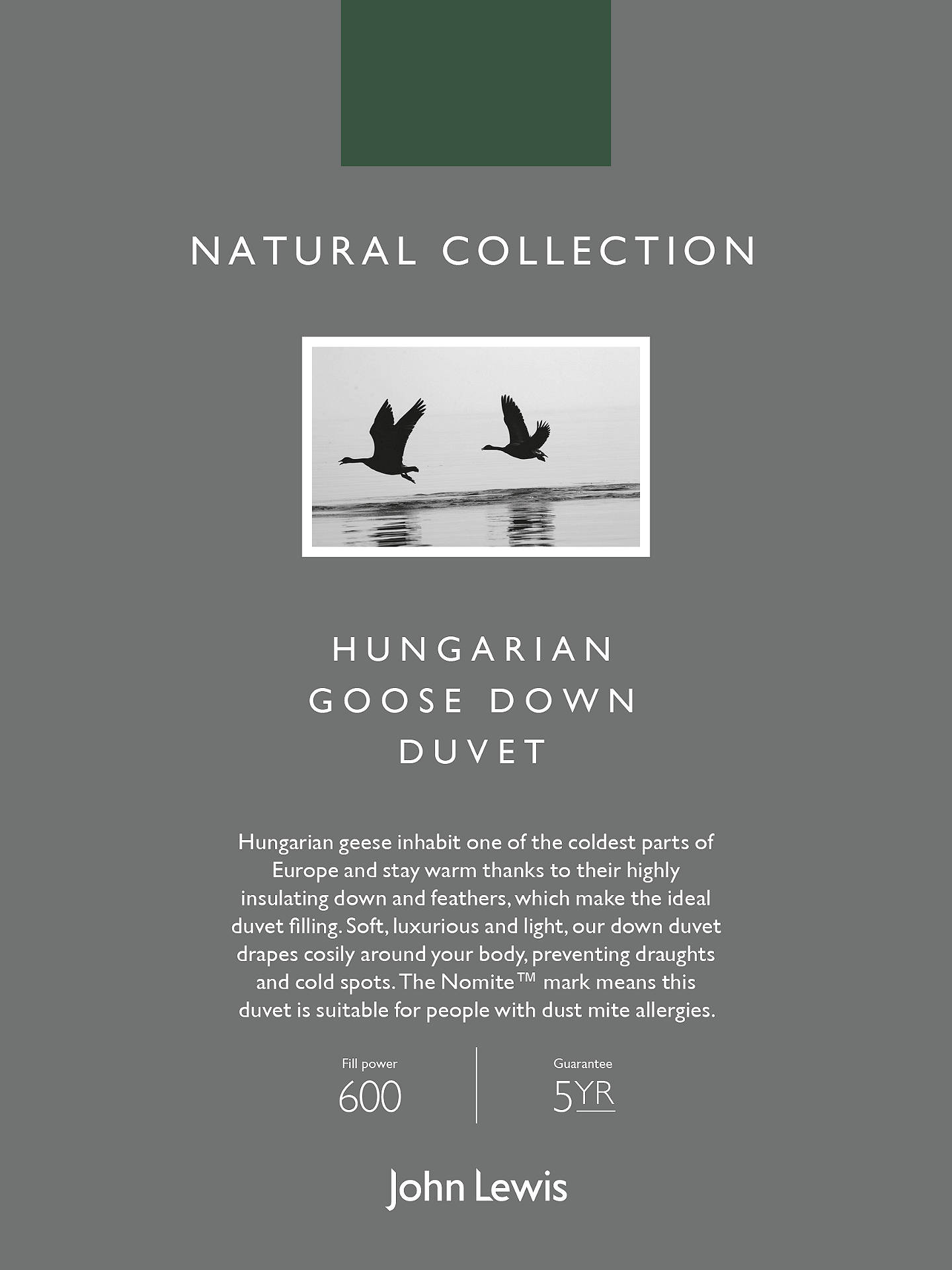 Buy John Lewis & Partners Natural Collection Hungarian Goose Down Duvet, 2.5 Tog, Single Online at johnlewis.com