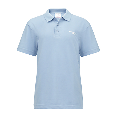 Product photo of Portland place school polo shirt sky blue