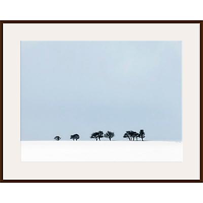Finn Hopson – Treeline