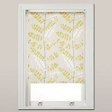 Buy John Lewis Malin Daylight Roller Blind, Fennel Online at johnlewis.com