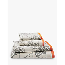 Buy Scion Spike Towels Online at johnlewis.com