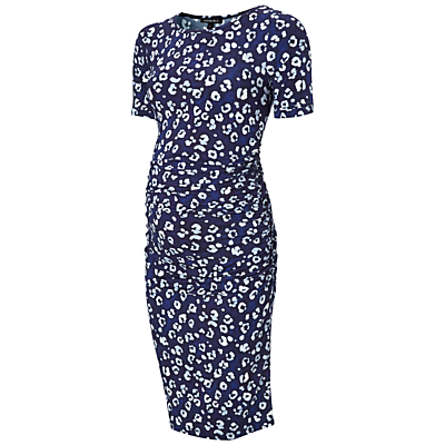 Isabella Oliver Robson Print Maternity Dress, Blue/Multi