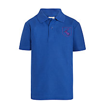 Buy Daiglen School Unisex Polo Shirt, Blue Online at johnlewis.com
