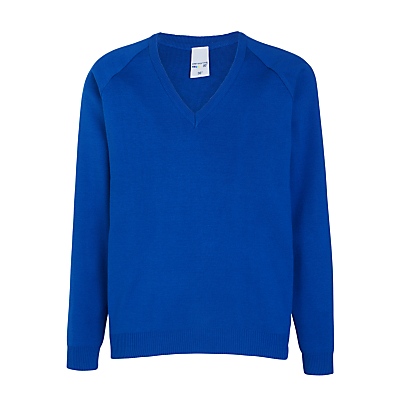 Product photo of Dolphin school unisex pullover royal blue