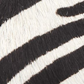 Black/White Zebra