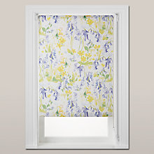 Buy bluebellgray Bluebell Woods Daylight Roller Blind, Multi Online at johnlewis.com