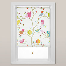 Buy Harlequin What a Hoot Roller Blind, Spring Mechanism Online at johnlewis.com