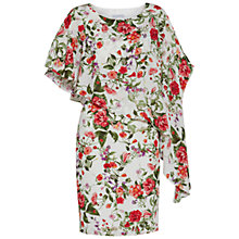 Buy Gina Bacconi Summer Garden Dress, Sage Red Online at johnlewis.com