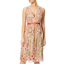 Buy Adrianna Papell Embroidered Tulle Fit And Flare Prom Dress, Nude/Multi Online at johnlewis.com
