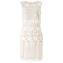 Buy Precis Petite Abra Lace Dress, Pink/Multi Online at johnlewis.com