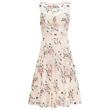 Buy Phase Eight Prudence Embroidered Dress, Cameo Online at johnlewis.com