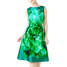 Buy Precis Petite Peggy Placement Flared Dress, Dark Green Online at johnlewis.com