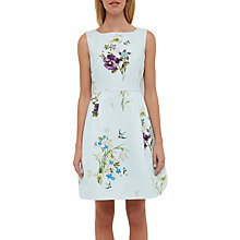 Buy Ted Baker Spring Meadow Woven Skater Dress, Baby Blue Online at johnlewis.com