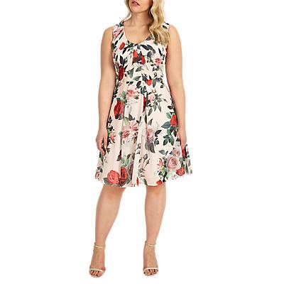 Studio 8 Amily Floral Print Dress, Multi