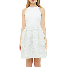 Buy Ted Baker Tie The Knot Lexana Embroidered Flowers Skater Dress, Light Green Online at johnlewis.com