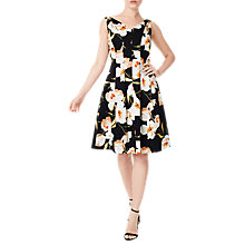 Buy Precis Petite Blair Floral Print Flared Dress, Black/Multi Online at johnlewis.com