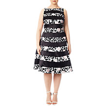 Buy Adrianna Papell Plus Size Boat Neck Fit And Flare Dress, Pink/Black Online at johnlewis.com