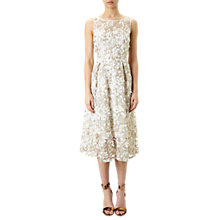 Buy Adrianna Papell 3D Lace Fit And Flare Midi Dress, Ivory/Gold Online at johnlewis.com