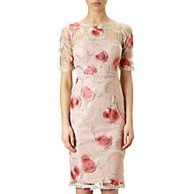 Buy Adrianna Papell Spring Bloom Embroidered Cocktail Dress, Whisper Pink/Champagne Online at johnlewis.com