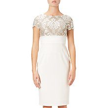 Buy Adrianna Papell Embroidered Sheath Dress, Ivory/Nude Online at johnlewis.com