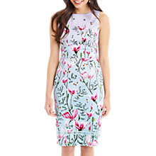 Buy Oasis Magnolia Ombre Pencil Dress, Multi Online at johnlewis.com