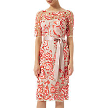 Buy Adrianna Papell Two-Tone Embroidery Dress, Blush/Rouge Online at johnlewis.com