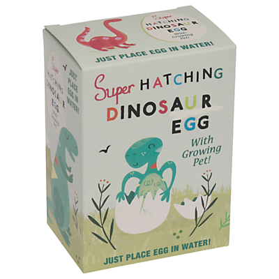 Image of Rex London Hatch Your Own Dinosaur Egg