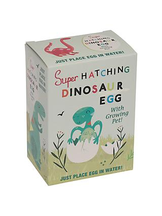 Rex London Hatch Your Own Dinosaur Egg