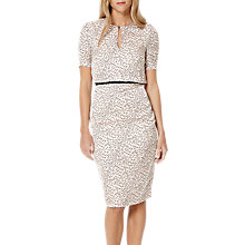 Buy Damsel in a dress Lynx Print Dress, Multi Online at johnlewis.com