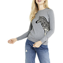 Buy Oasis ZSL Zebra Knit Jumper, Mid Grey Online at johnlewis.com
