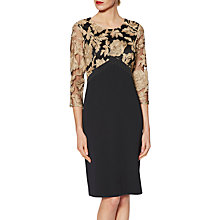 Buy Gina Bacconi Renatta Embroidered Bodice Dress, Black/Gold Online at johnlewis.com