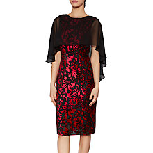 Buy Gina Bacconi Lottie Floral Velvet Cape Dress, Black/Ruby Online at johnlewis.com