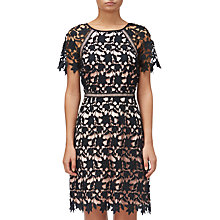 Buy Adrianna Papell Ava Lace Trimmed A-line Dress, Black/Rose Gold Online at johnlewis.com
