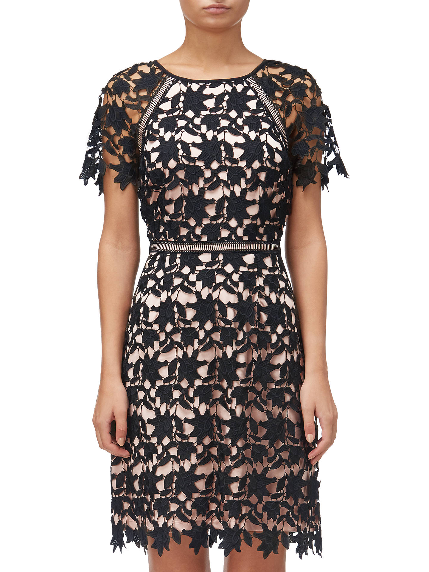 Adrianna Papell Ava Lace Trimmed A Line Dress Blackrose