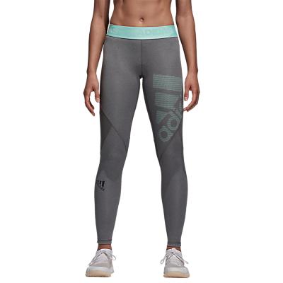 adidas Alphaskin Sport Training Tights, Dark Grey Heather/Clear Mint